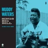 VINYL Waters Muddy Sings 'big bill' -hq- [vinyl]