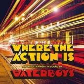 CD Waterboys Where the action is